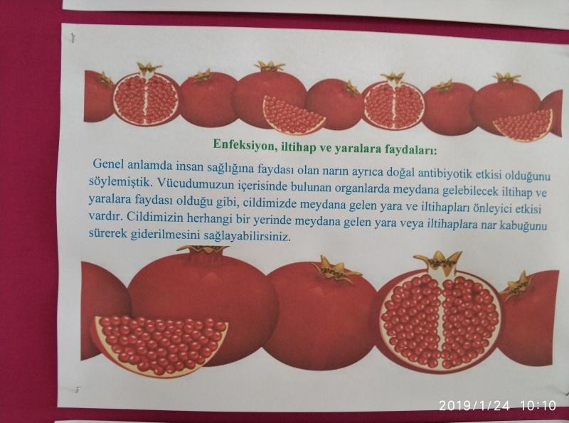 Ocak Ayı Beslenme Dostu Okul Panomuz Recep Tayyip Erdoğan